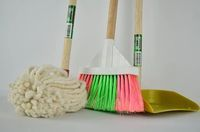 Domestic Cleaning Services - 44505 varieties