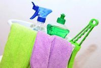 Domestic Cleaning Services - 37332 prices
