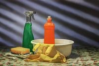 Domestic Cleaning Services - 92087 varieties