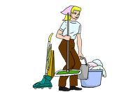 Domestic Cleaning Services - 87120 combinations