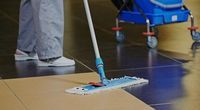 Domestic Cleaning Services - 54662 prices